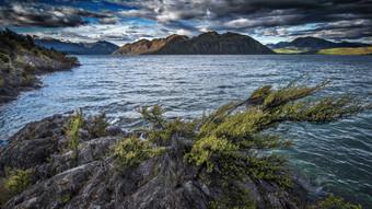 NZ wanaka lake 3 (1 sur 1).jpg