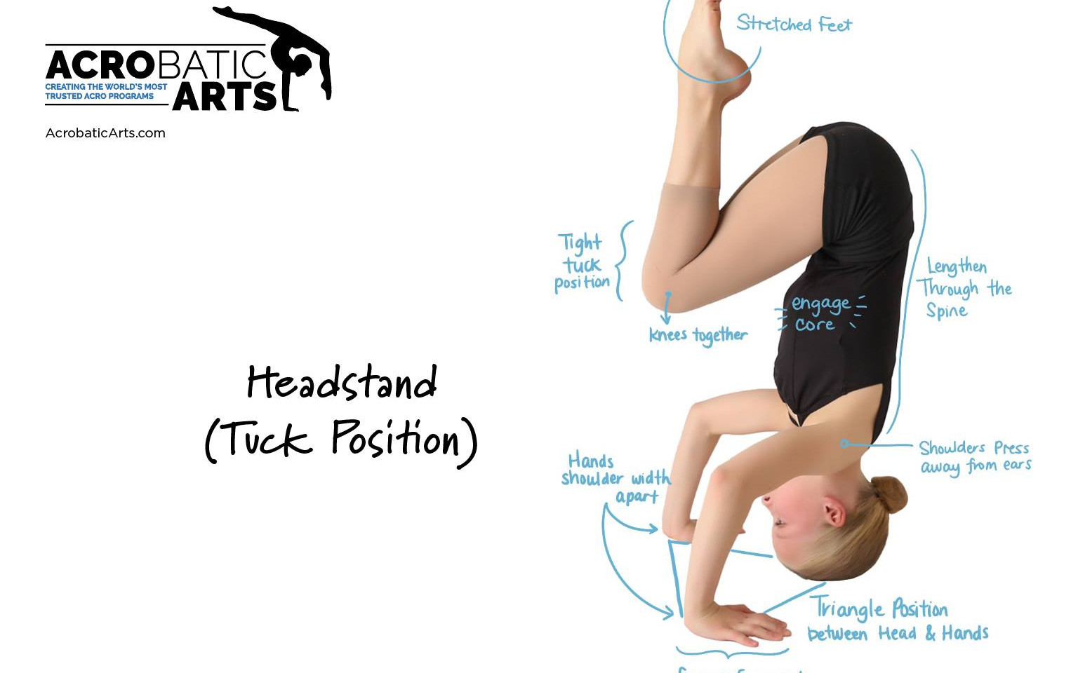Headstand Tuck Position.jpg