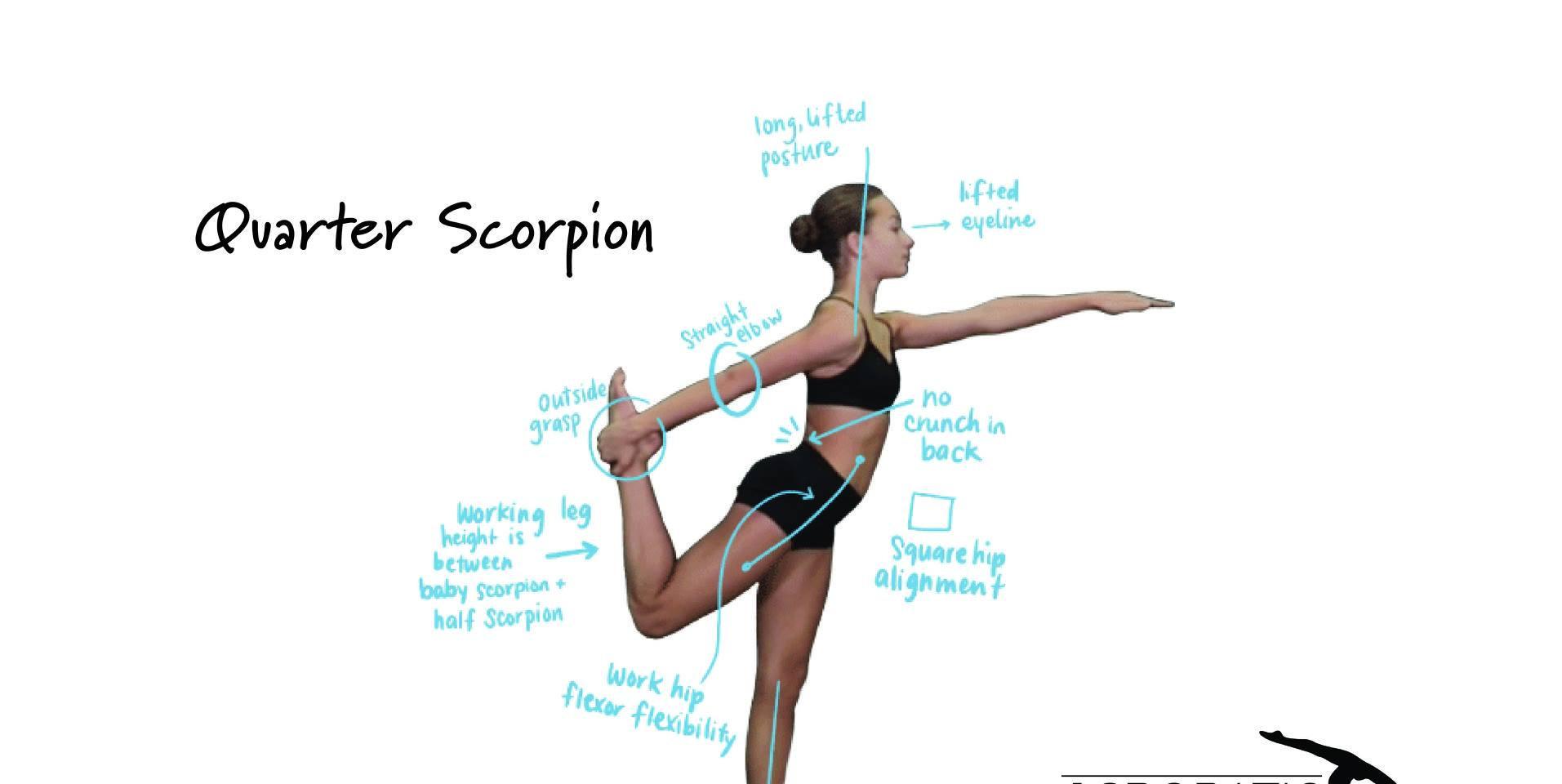 Quarter scorpion.jpg