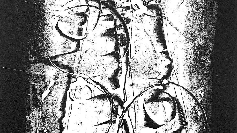 monoprint 0420