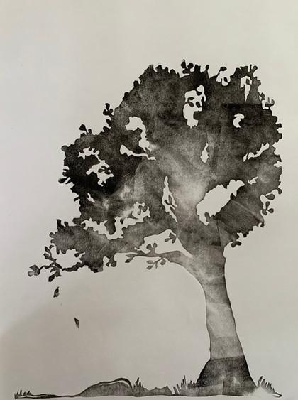 shadow/tree