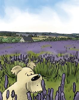 New Friends in a Lavender Field