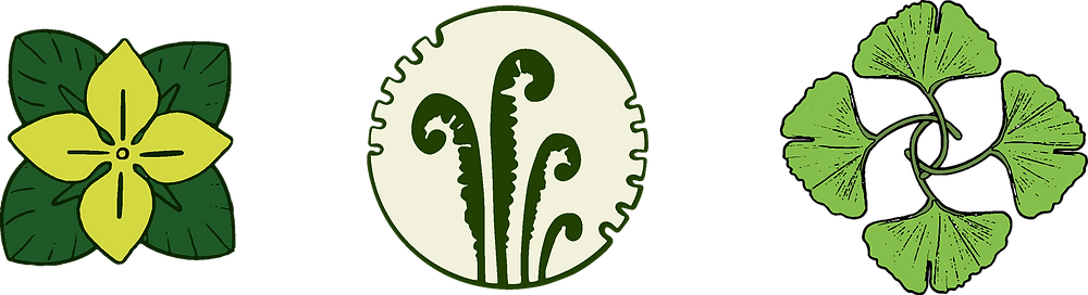 Three logo designs featuring: a yellow pimpernel, four ferns, and four ginkgo leaves
