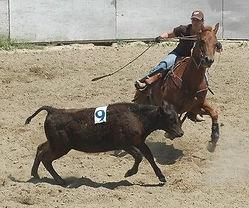 merced horsemens association