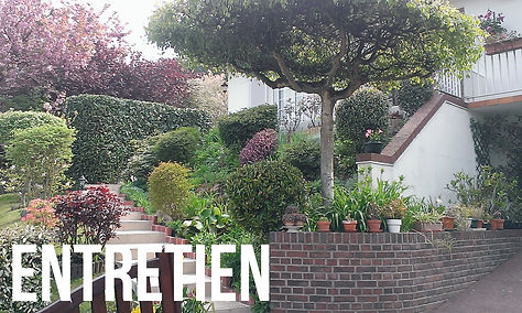 exemples, réalisation d'entretien de jardins