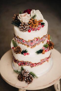 Fault Line Cake