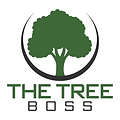 TB Logo PNG.png