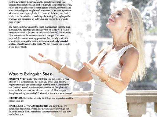 Discover Magazines | Choosing A Stress-Free Path To Peace and Neurological Power