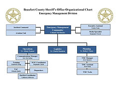 11-2020 Org Chart EMERGENCY MGMT.jpg