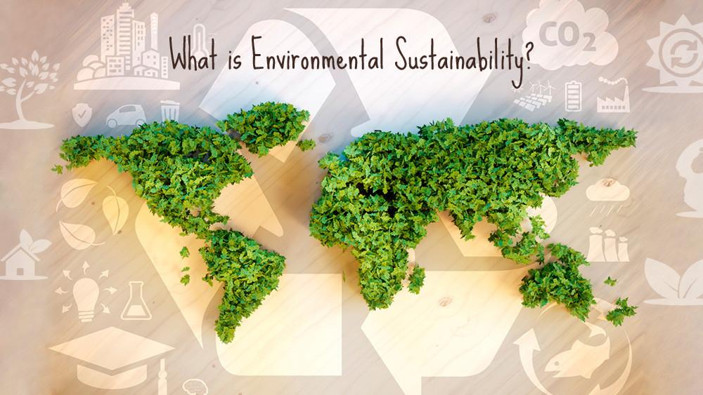 Image courtesy of sustainablefriends.com
