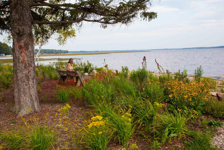 Whispering Pines Shoreline Project