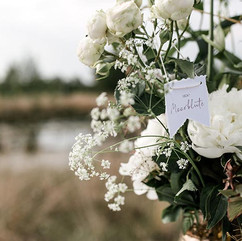 Liebe im Quadrat – Moorblüte