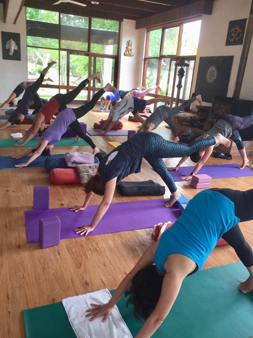 Hills Yoga Retreat Oct 2019 dog2.jpg