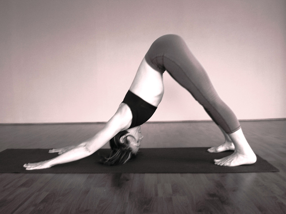 Dog Pose - Hills Yoga