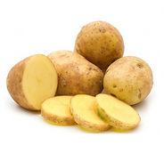 Продажа картофеля Тверь Агропром