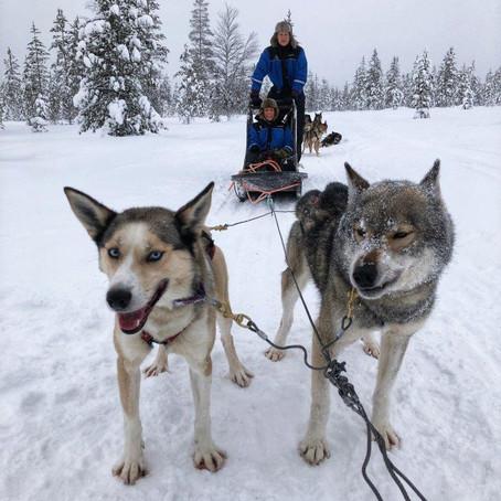 Vinter i de tusen sjøers land   Saariselkä, Finland