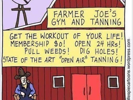 The Original Workout