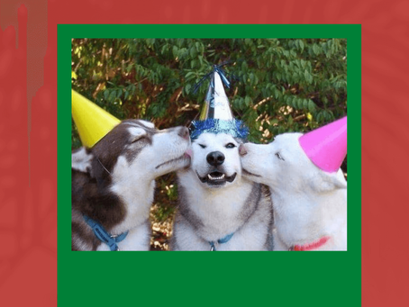 International Dog Day!