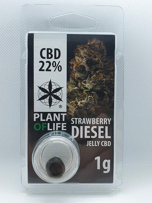 Strawberry Diesel CBD-Hash 22%
