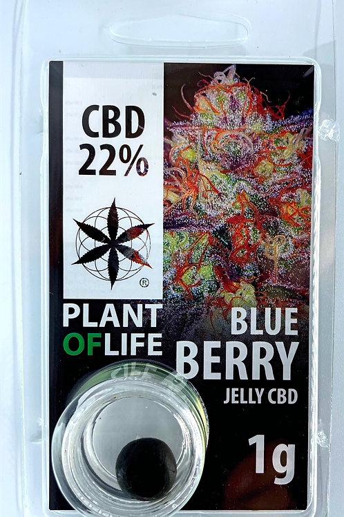 Blueberry CBD-Hash 22%