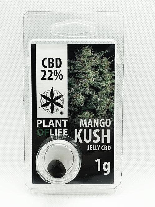 Mango Kush CBD-Hash 22%