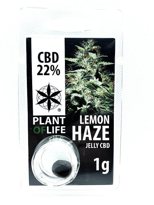 Lemon Haze CBD-Hash 22%