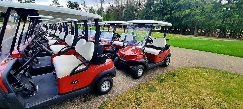 Red Hawk Golf Carts.jpg