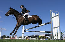 Equestrian events are frequently spread out and two-way radios are a reliable communication system.