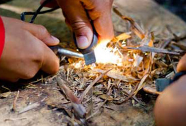 Bushcraft & Survival