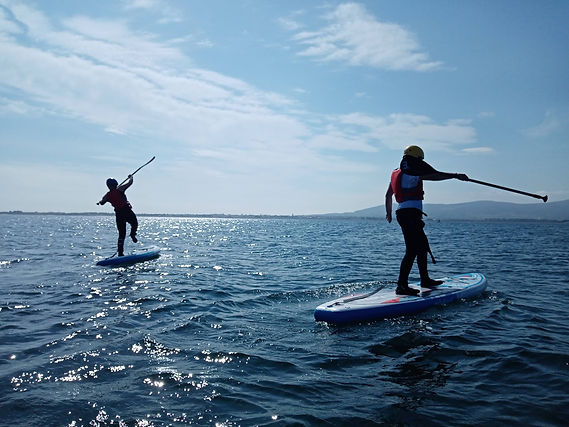 Paddle boards - Adventure - Corporate -