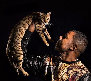 Bengal Cat Jungletrax Justified Prestige TICA