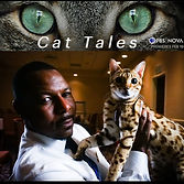 Jungletrax Cat Tales Nova on PBS.jpg