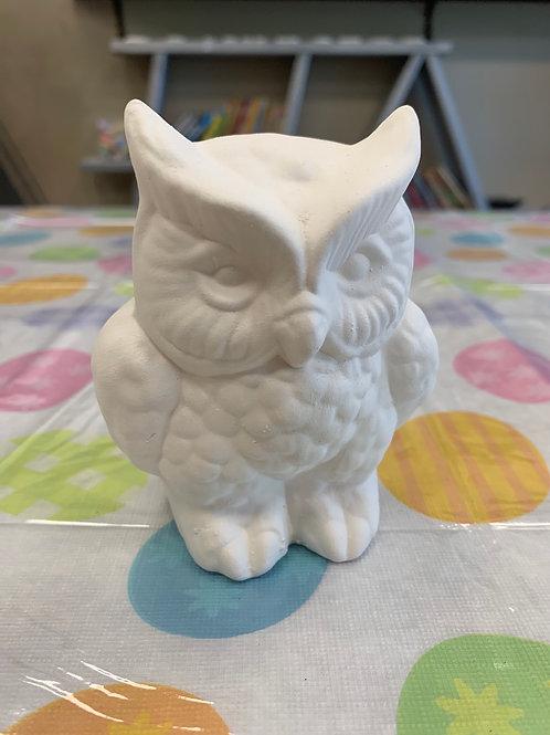USA Owl