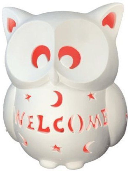 *PRE-ORDER* Personalized Light-up Owl