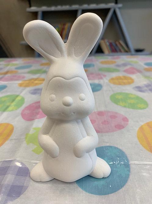 Bunny dressed