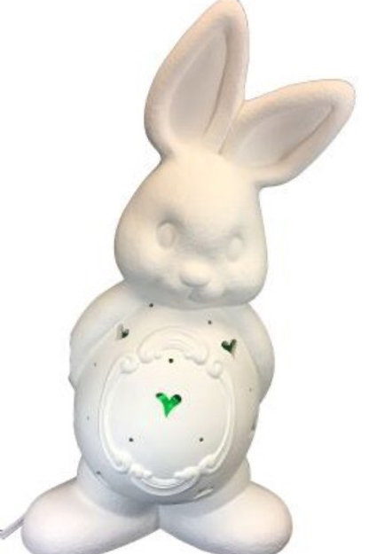 *PRE-ORDER*Personalized Light-up Bunny