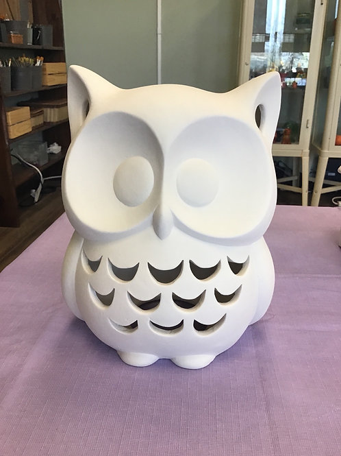 Light up Owl