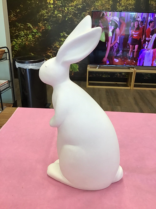 Plain Bunny