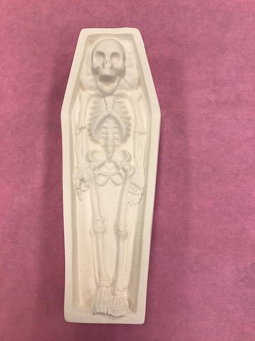 Skull in Coffin