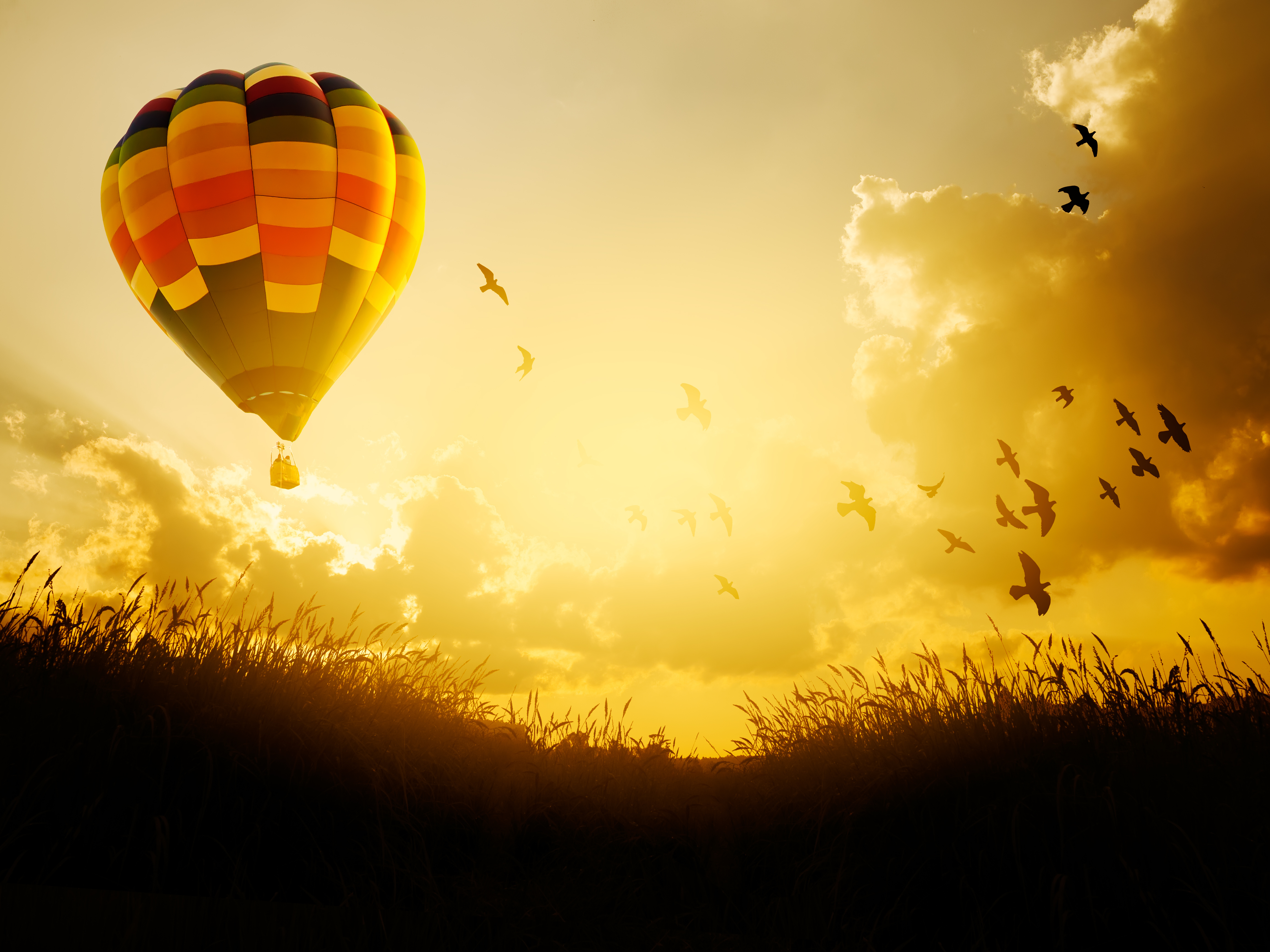 Hot air balloon flying with birds in sun