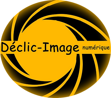 1 Logo Déclic-Image Web (1).png