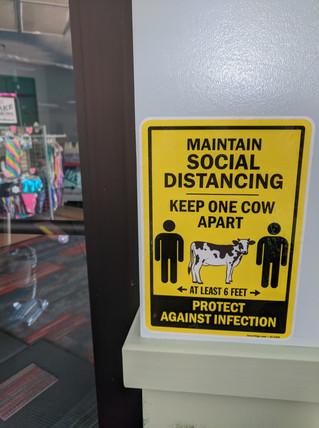 Keep 1 Cow Apart!