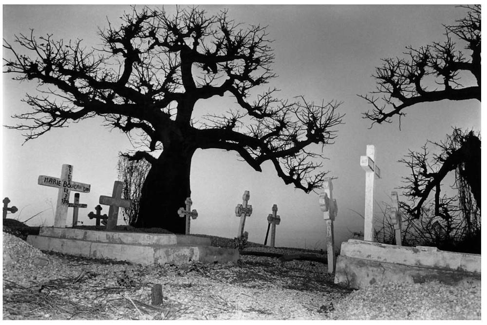 Los árboles de Alá O Akbar Baobab hacen guardia, monstruosos y familiares gigantes, sobre las lápidas del cementerio católico de Fadiouth. Fadiouth, Senegal. 1988. Abbas | Magnum PhotosLicense |