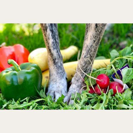Benefits of Fruits & Veggies