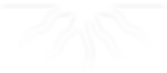 Radix Advisors Logo