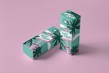 Day-Trip-Tincture-Box-Mockup-01-min.jpg