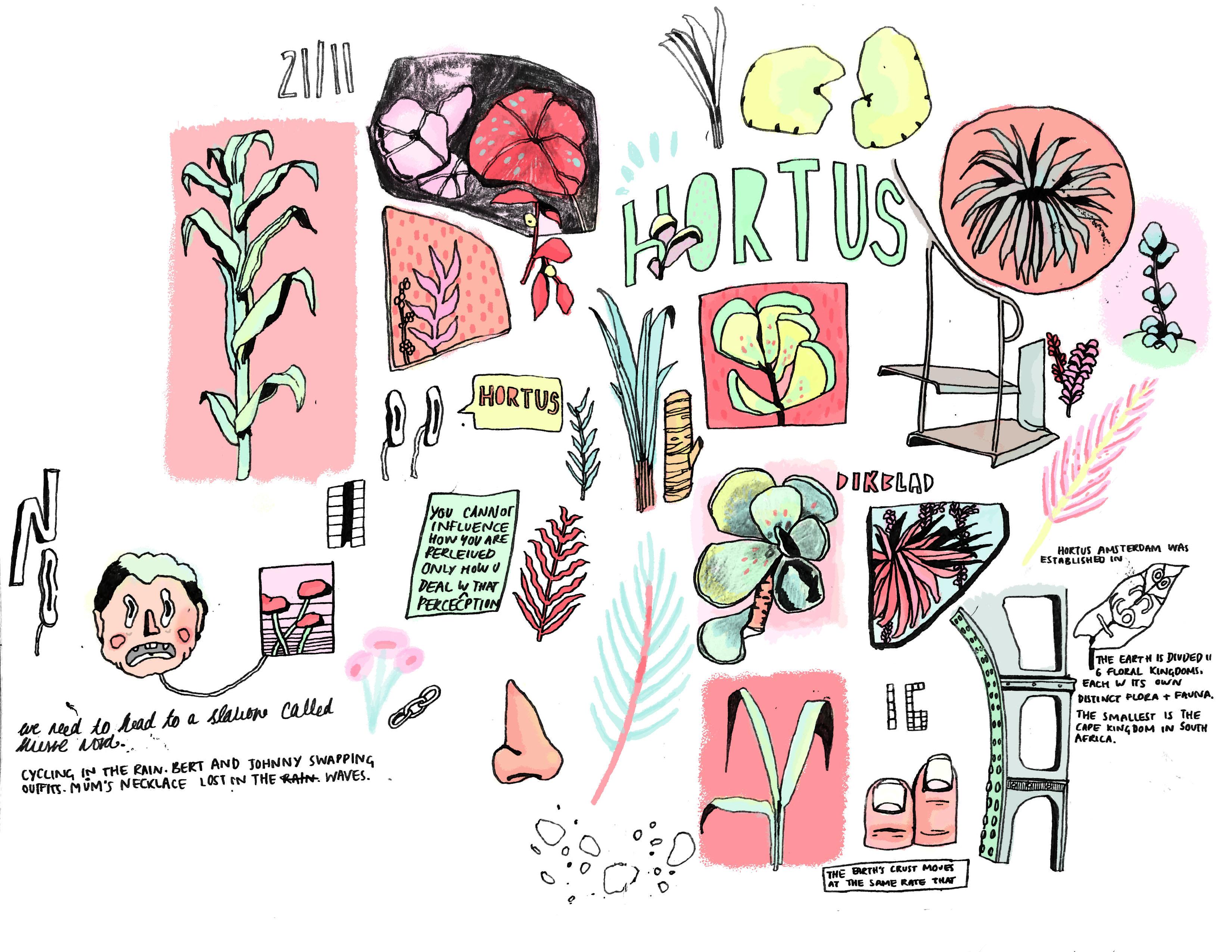 hortus sketchbook 2.jpg