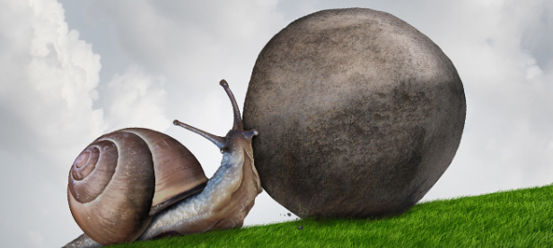 snail willpower