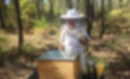 Australian Honey News from Honey In The Garden