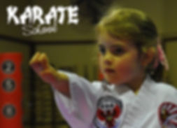 Karate School - contact us for our latest specials